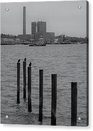 Q. River Acrylic Print