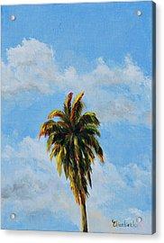 Quad Palms 2 Of 4 Acrylic Print by Beth Maddox