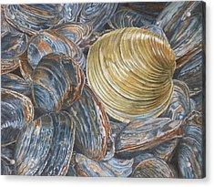 Quahog On Clams Acrylic Print