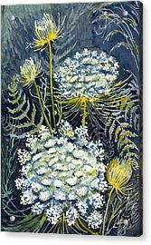Acrylic Print featuring the painting Queen Anne's Lace by Katherine Miller