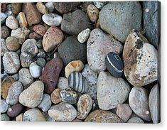Queen Charlotte Island Stones Acrylic Print by Sherry Leigh Williams