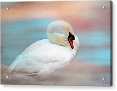 Queen Of The Lake Acrylic Print by Wallaroo Images