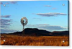 Queensland Windmill Acrylic Print by Susan Vineyard