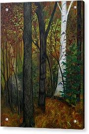 Quiet Autumn Woods Acrylic Print