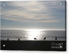 Quiet Moment Acrylic Print by Don Robson