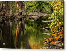 Quiet River Acrylic Print