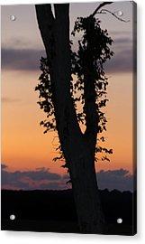 Quiet Sunset Acrylic Print