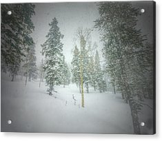 Acrylic Print featuring the photograph Quiet Turns  by Mark Ross