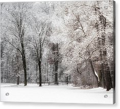 Quiet Winter  Acrylic Print