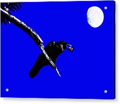 Quoth The Raven Nevermore . Blue Acrylic Print by Wingsdomain Art and Photography