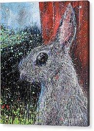 Rabbit And Barn Acrylic Print