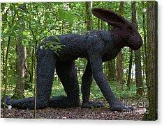 Rabbit At Cheekwood Acrylic Print