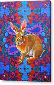 Rabbit Acrylic Print by Jane Tattersfield