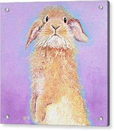 Rabbit Painting - Babu Acrylic Print