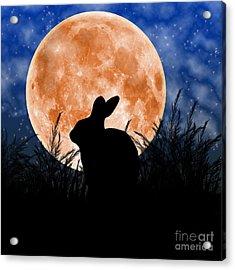 Rabbit Under The Harvest Moon Acrylic Print by Elizabeth Alexander
