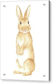 Acrylic Print featuring the painting Rabbit Watercolor by Taylan Apukovska