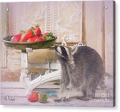 Raccoon And Strawberries Acrylic Print by Tim Wemple