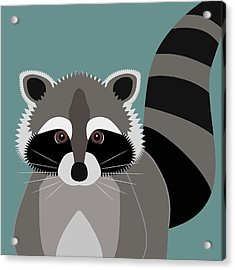 Raccoon Forest Bandit Acrylic Print by Antique Images