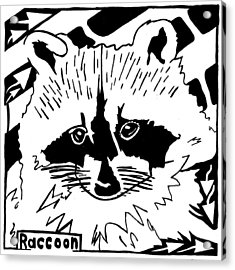 Raccoon Maze Acrylic Print by Yonatan Frimer Maze Artist