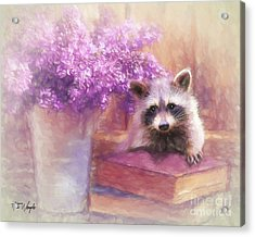 Raccoon Reader Acrylic Print by Tim Wemple