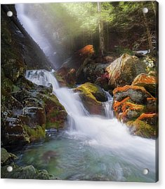 Acrylic Print featuring the photograph Race Brook Falls 2017 Square by Bill Wakeley