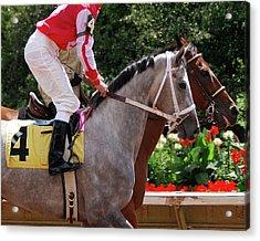 Race Horse No 4  2008 Acrylic Print by Joseph Duba