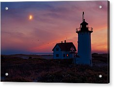 Race Point Lighthouse Standing Guard Acrylic Print
