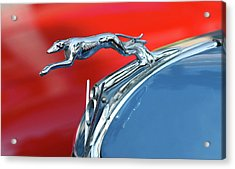 Racer Acrylic Print by Rebecca Cozart