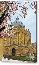Radcliffe Camera Bodleian Library Oxford  Acrylic Print