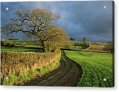 Raddon Top In Mid Devon Acrylic Print