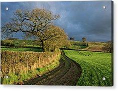 Raddon Top In Mid Devon Acrylic Print