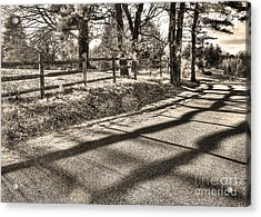 Acrylic Print featuring the photograph Radiance by Betsy Zimmerli