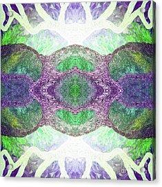 Radiance  Acrylic Print by Rachel Hannah