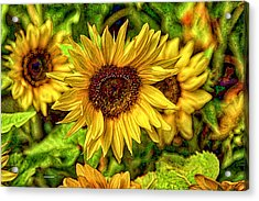 Radiate Love To The World Acrylic Print by Dennis Baswell