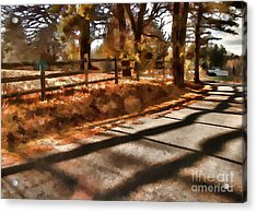 Acrylic Print featuring the photograph Radiating by Betsy Zimmerli