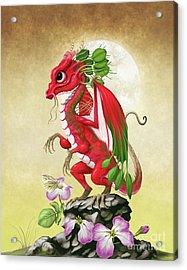 Radish Dragon Acrylic Print by Stanley Morrison