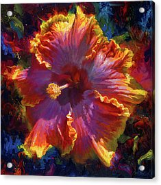 Rainbow Hibiscus Tropical Flower Wall Art Botanical Oil Painting Radiance  Acrylic Print