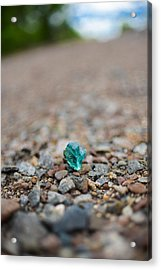 Acrylic Print featuring the photograph Trackside Treasure by Alex Blondeau