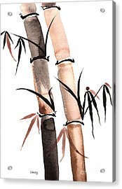 Rain Bamboo Acrylic Print