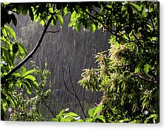 Acrylic Print featuring the photograph Rain by Bruno Spagnolo