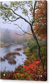 Acrylic Print featuring the photograph Rain by Chad Dutson