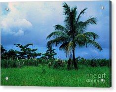 Rain Cloudsover Dominica Acrylic Print by Thomas R Fletcher