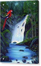 Rain Forest Macaws Acrylic Print