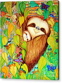 Rain Forest Survival Mother And Baby Three Toed Sloth Acrylic Print