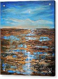 Rain In The Distance Acrylic Print by Linda Olsen