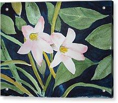 Rain Lilly Acrylic Print
