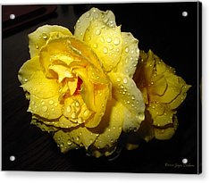 Acrylic Print featuring the photograph Rain Soaked Yellow Rose by Joyce Dickens