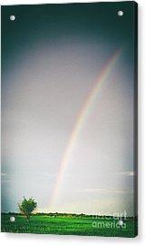 Rainbow #0157 Acrylic Print