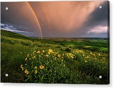 Rainbow At Steptoe Butte Acrylic Print