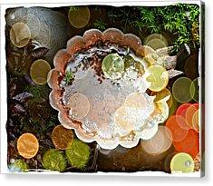 Rainbow Birdbath Acrylic Print